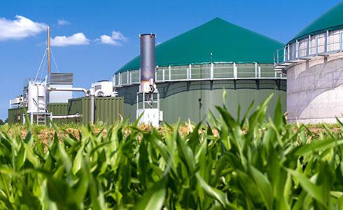 enervis Modellierung Biomasse- Ausschreibungen