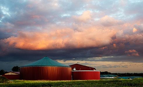 enervis Biomasse und Biogas